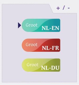 Van_dale_interface_design_dictionary