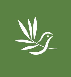 Clime_Logo_design_bird_icon