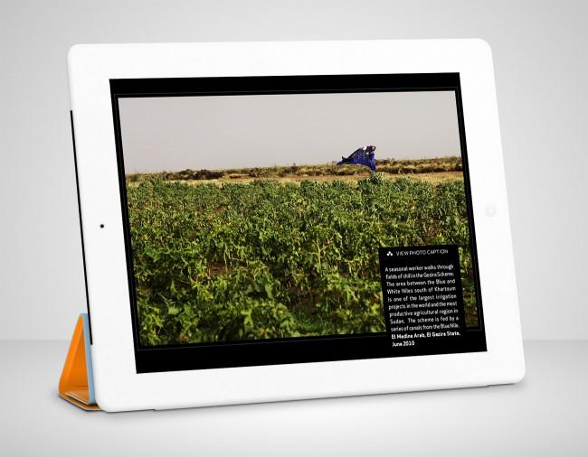 2_Sudan_design_book_application_ebook_app